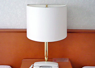 lampshade-1